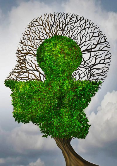 50924297 - perfect business partnership as a connecting puzzle shaped as two trees in the form of human heads connecting together to complete each other as a corporate success metaphor for cooperation and agreement as equal partners.