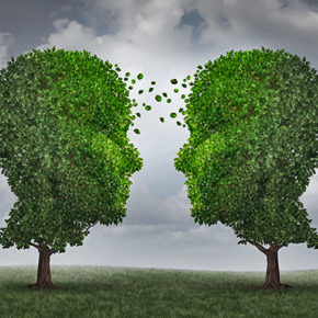 42215311 - communication and growth concept as a growing partnership and teamwork exchange in business with two trees in the shape of human heads on a sky with leaves exchanging from one face to the other as a concept of cooperation.