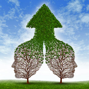 14837711 - growing together partnership with two trees in the shape of human business men heads merging as one to form a successful team resulting in fertile growth ass a leaf arrow pointing up
